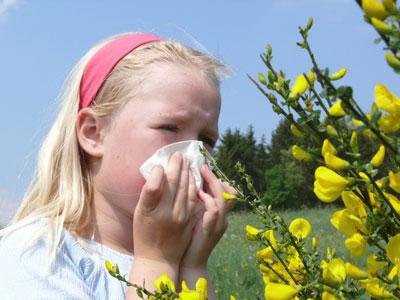 pollen allergia ellen alga